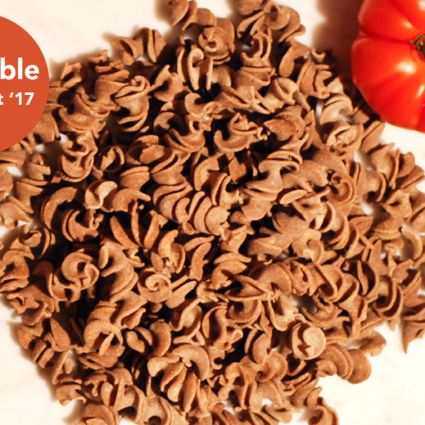 Crické fusilli made with cricket flour with a red tomatoe