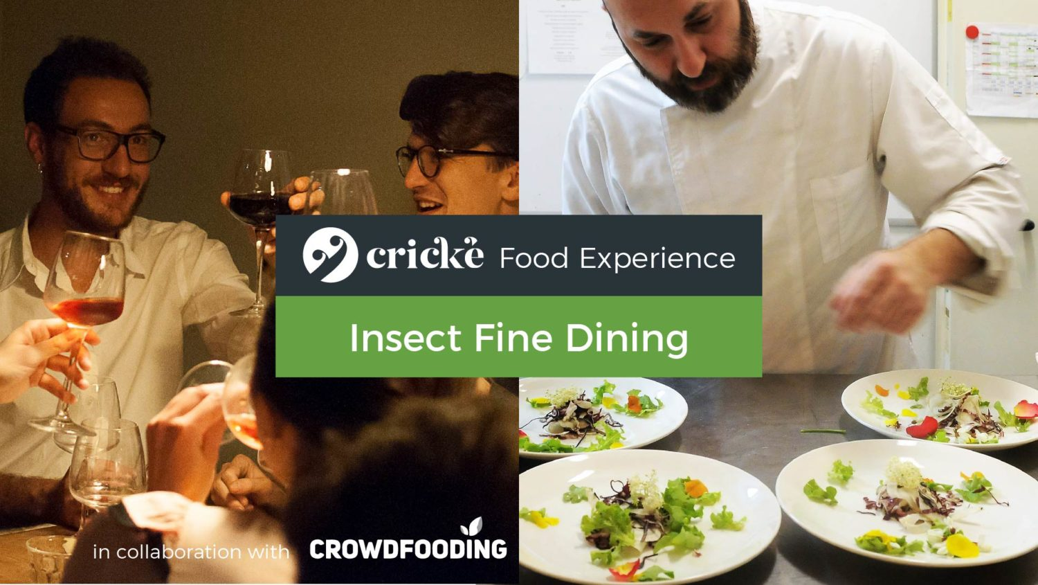 Insect Fine Dining